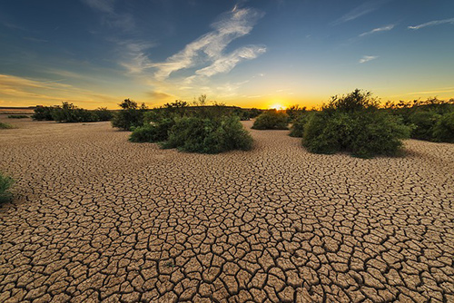 drought-image